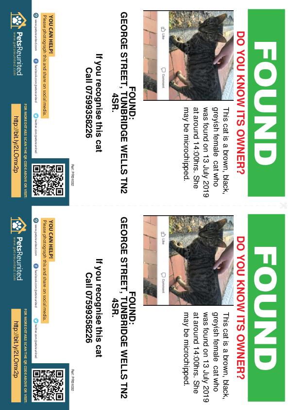 Found pet flyers - Found cat: Brown, black, greyish cat