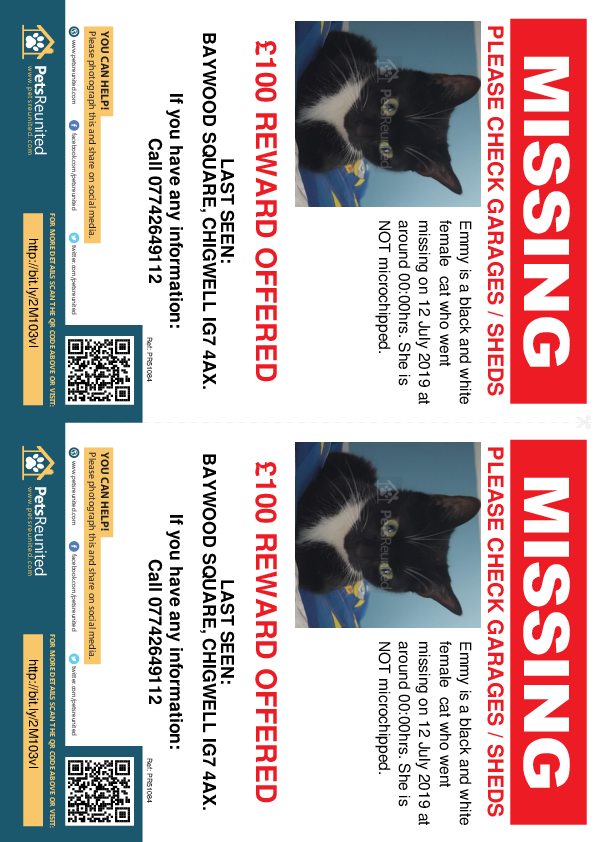 Lost pet flyers - Lost cat: Black and white cat called Emmy