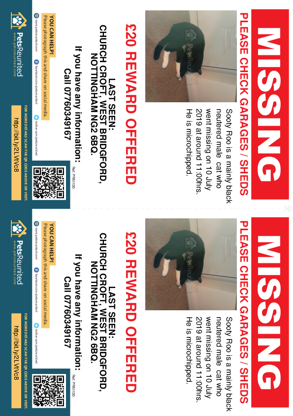Lost pet flyers - Lost cat: Mainly black cat called Sooty Roo