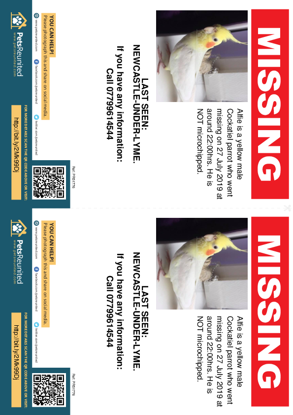Lost pet flyers - Lost parrot: Yellow Cockatiel parrot called Alfie