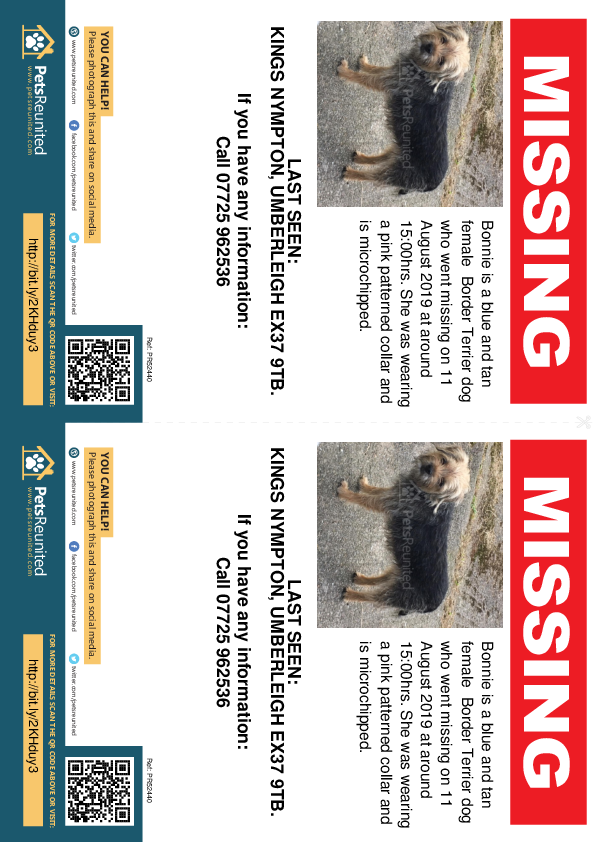 Lost pet flyers - Lost dog: Blue and Tan Border Terrier dog called Bonnie