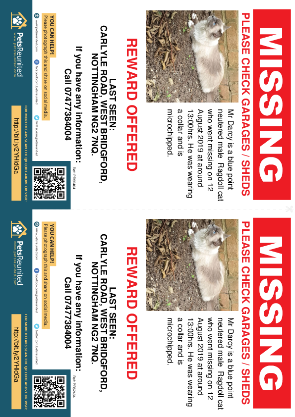 Lost pet flyers - Lost cat: Blue point Ragdoll cat called Mr Darcy