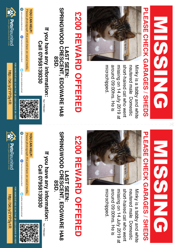Lost pet flyers - Lost cat: Tabby and white cat called Minky