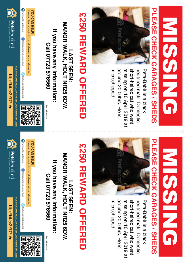 Lost pet flyers - Lost cat: Black cat called Peta-Babè