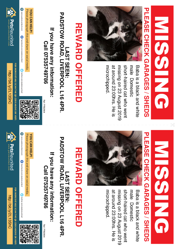 Lost pet flyers - Lost cat: Black and white cat called Baba