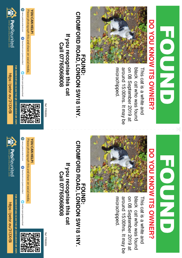 Found pet flyers - Found cat: White and black cat