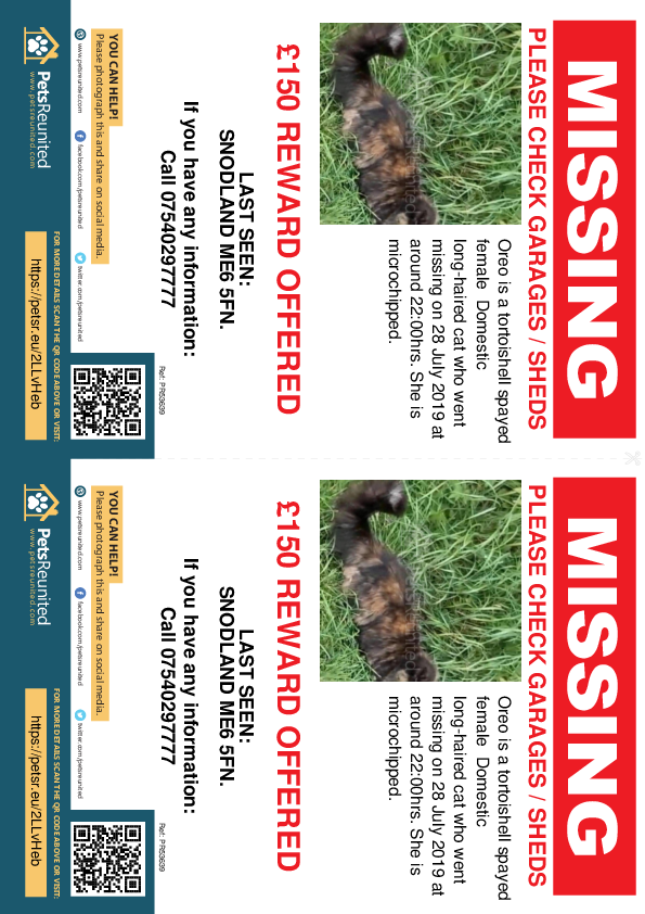 Lost pet flyers - Lost cat: Tortoishell cat called Oreo