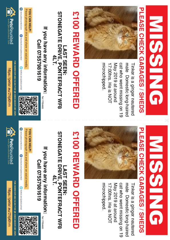 Lost pet flyers - Lost cat: Ginger cat called Tinker
