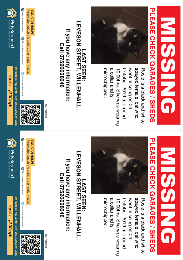 Lost pet flyers - Lost cat: Black and white cat called Rosie