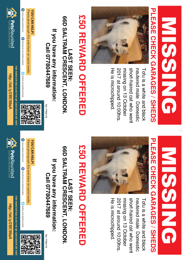 Lost pet flyers - Lost cat: White and Black cat called Tofu