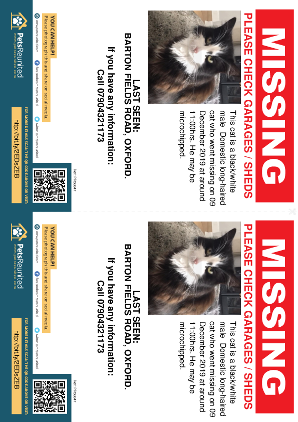 Lost pet flyers - Lost cat: Black/White cat [name witheld]