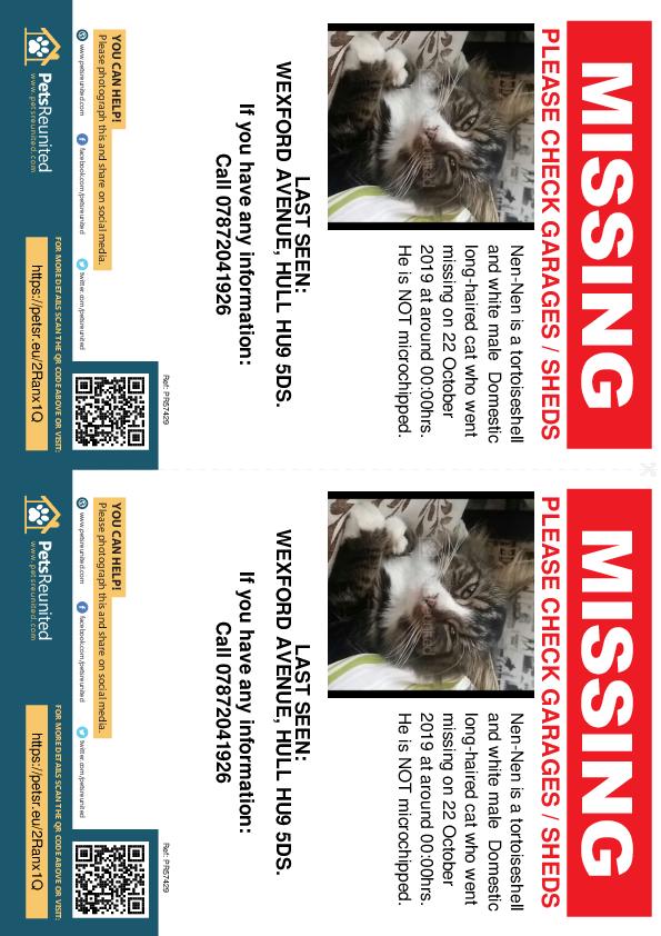 Lost pet flyers - Lost cat: Tortoiseshell and white cat called Nen-Nen