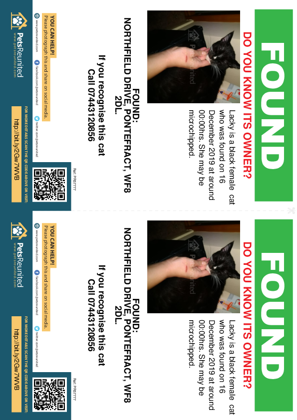 Found pet flyers - Found cat: Black cat called Lacky