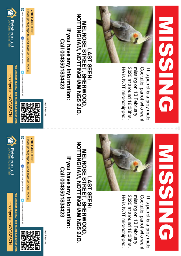 Lost pet flyers - Lost parrot: Grey Cockatiel parrot [name witheld]