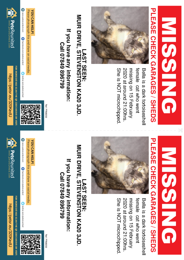 Lost pet flyers - Lost cat: Dark tortoiseshell cat called Bella