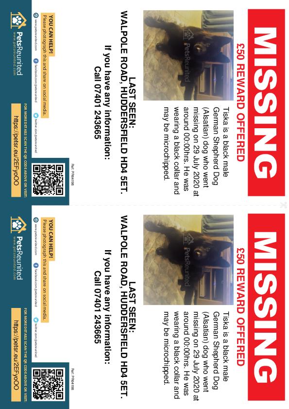 Lost pet flyers - Lost dog: Black German Shepherd Dog (Alsatian) dog called Tiska