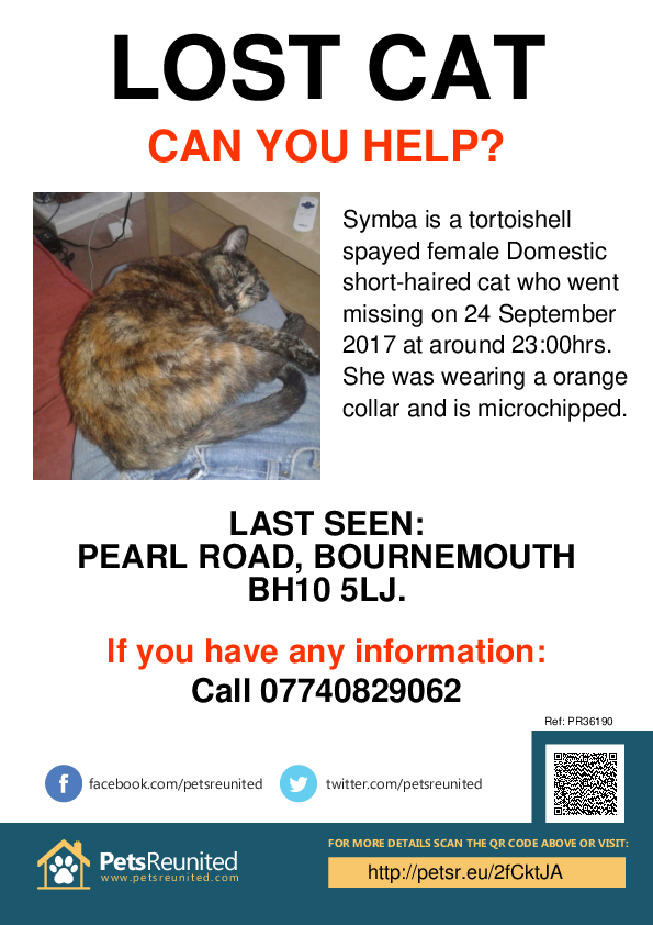 Lost pet poster - Lost cat: Tortoishell cat called Symba