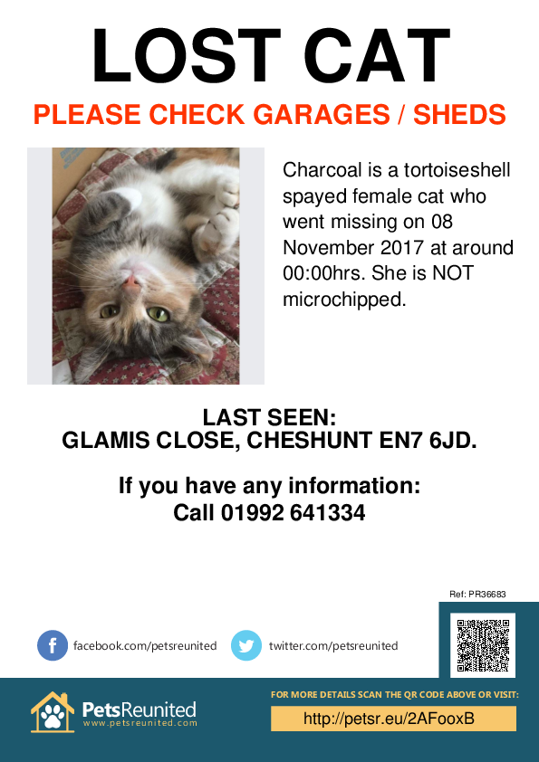 Lost pet poster - Lost cat: Tortoiseshell  cat called Charcoal
