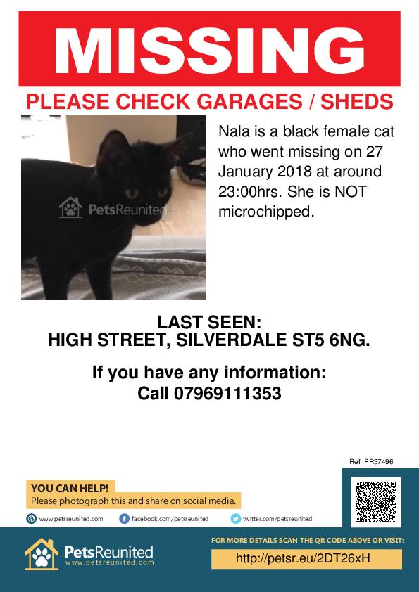 Lost pet poster - Lost cat: Black cat called Nala
