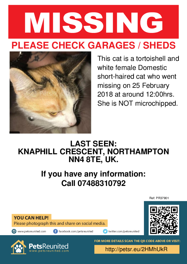 Lost pet poster - Lost cat: Tortoishell and white cat [name witheld]