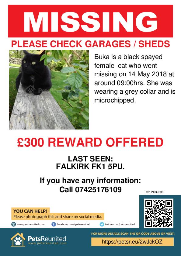 Lost pet poster - Lost cat: Black cat called Buka