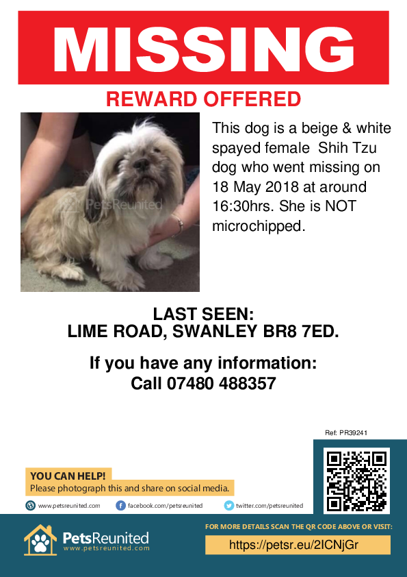 Lost dog: Beige & white Shih Tzu dog [name witheld