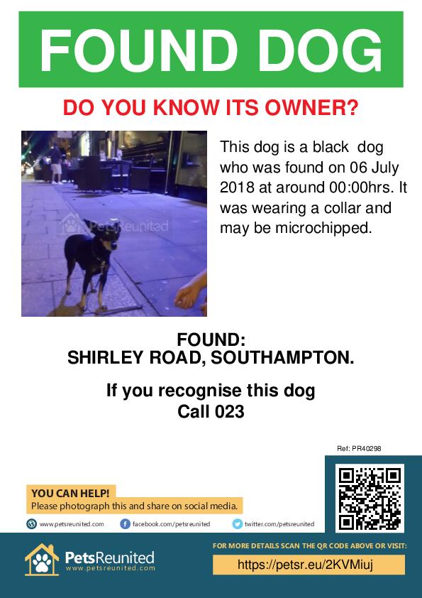 Found pet poster - Found dog: Black dog