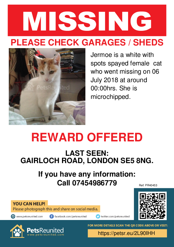 Lost pet poster - Lost cat: White with spots cat called Jermoe