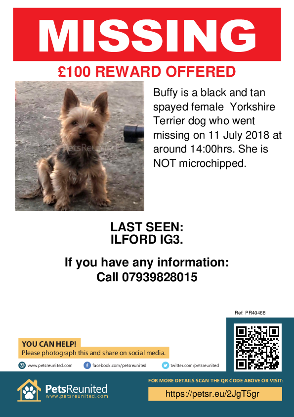 Lost pet poster - Lost dog: Black and Tan Yorkshire Terrier dog called Buffy