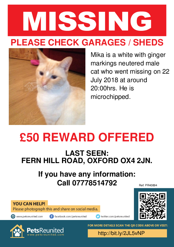 Lost pet poster - Lost cat: White with ginger markings cat called Mika