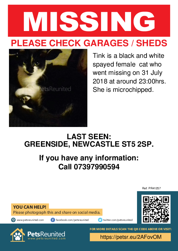 Lost pet poster - Lost cat: Black and white cat called Tink