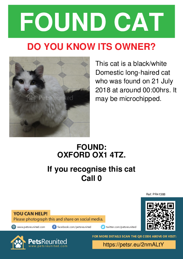 Found pet poster - Found cat: Black/White cat