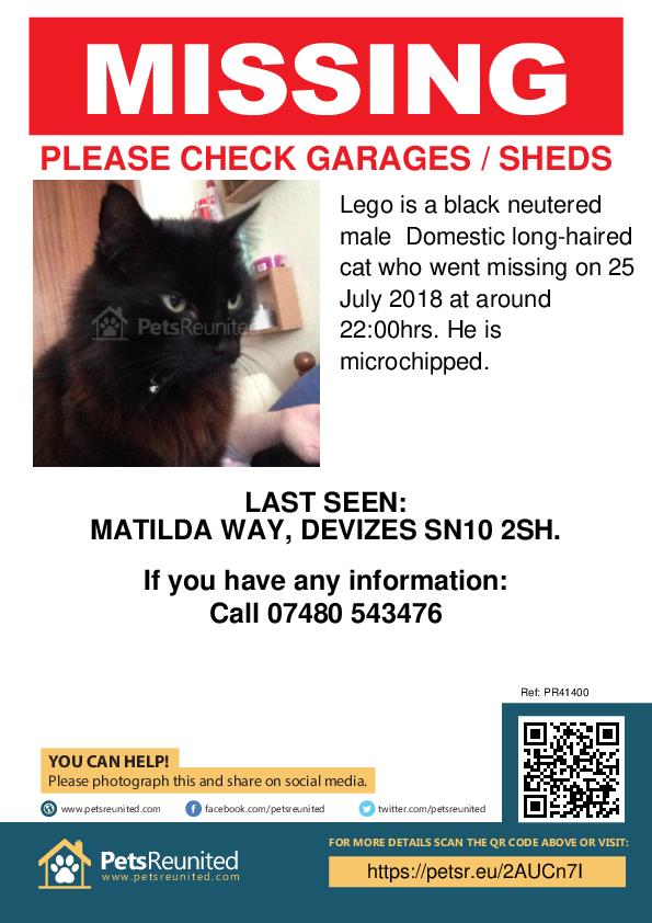 Lost pet poster - Lost cat: Black cat called Lego