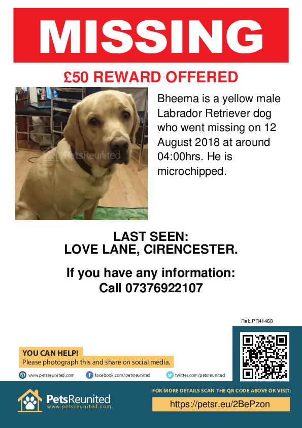 Lost pet poster - Lost dog: Yellow Labrador Retriever dog called Bheema