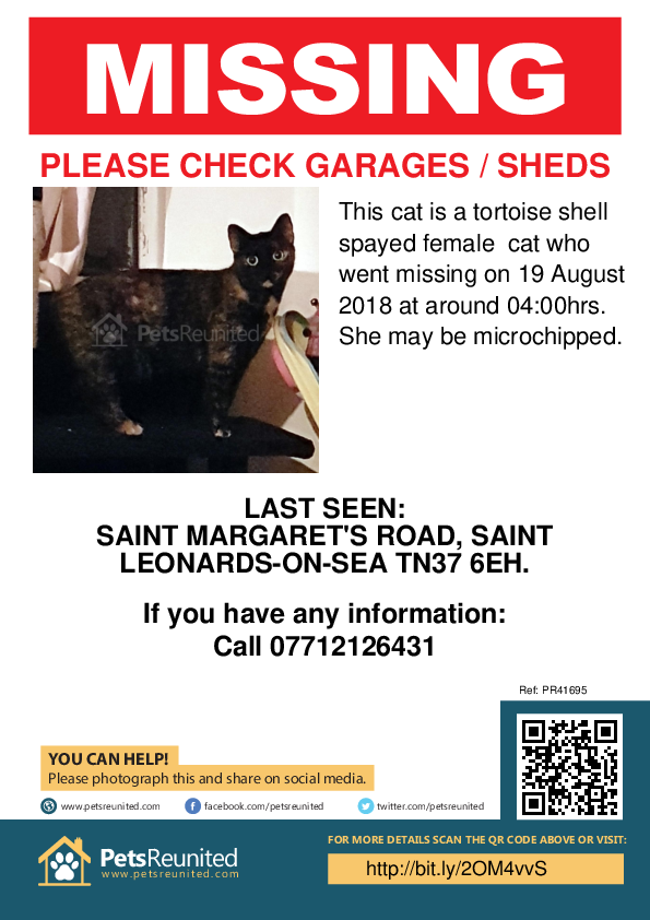 Lost pet poster - Lost cat: Tortoise shell cat [name witheld]