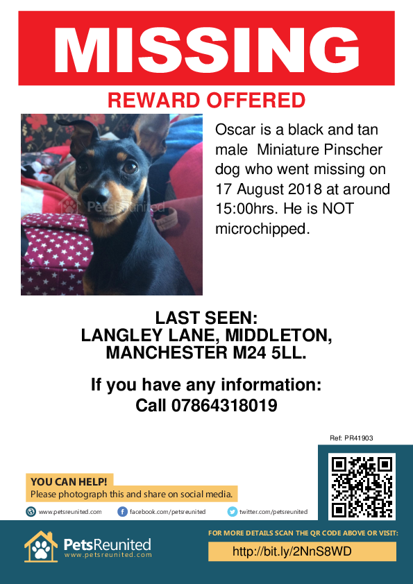 Lost pet poster - Lost dog: Black and tan Miniature Pinscher dog called Oscar