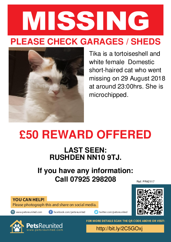Lost pet poster - Lost cat: Tortoiseshell and white cat called Tika