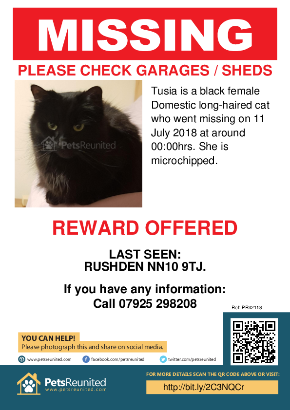 Lost pet poster - Lost cat: Black cat called Tusia