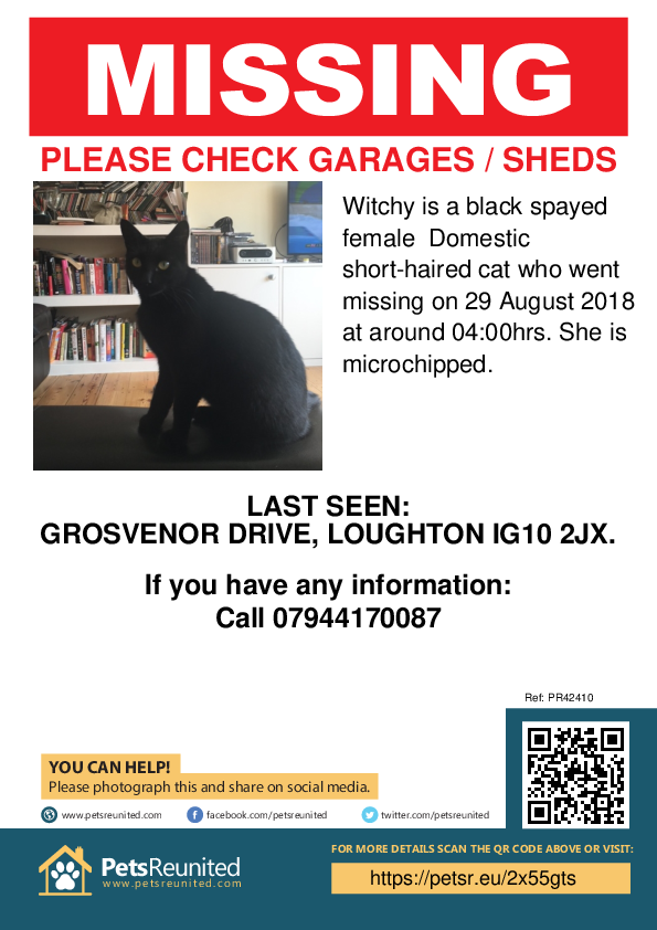 Lost pet poster - Lost cat: Black cat called Witchy