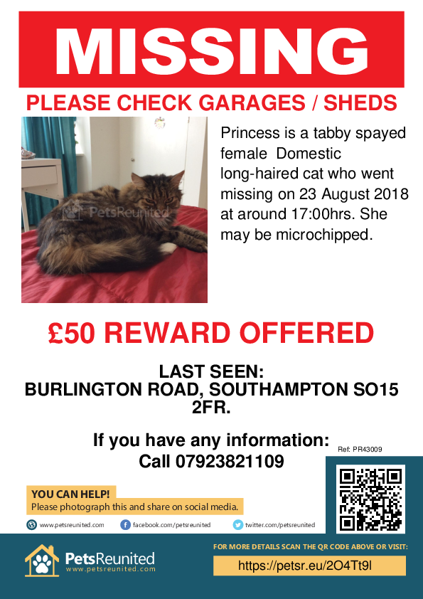 Lost pet poster - Lost cat: Tabby cat called Princess