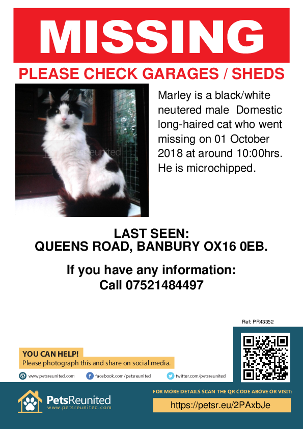 Lost pet poster - Lost cat: Black/White cat called Marley