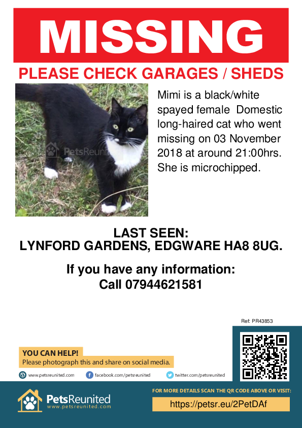 Lost pet poster - Lost cat: Black/White cat called Mimi