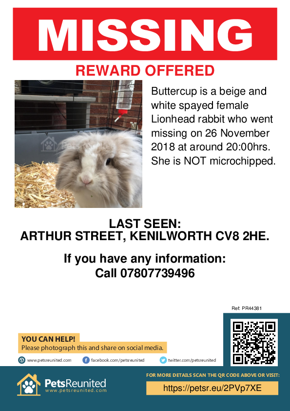 Lost pet poster - Lost rabbit: Beige and white Lionhead rabbit called Buttercup
