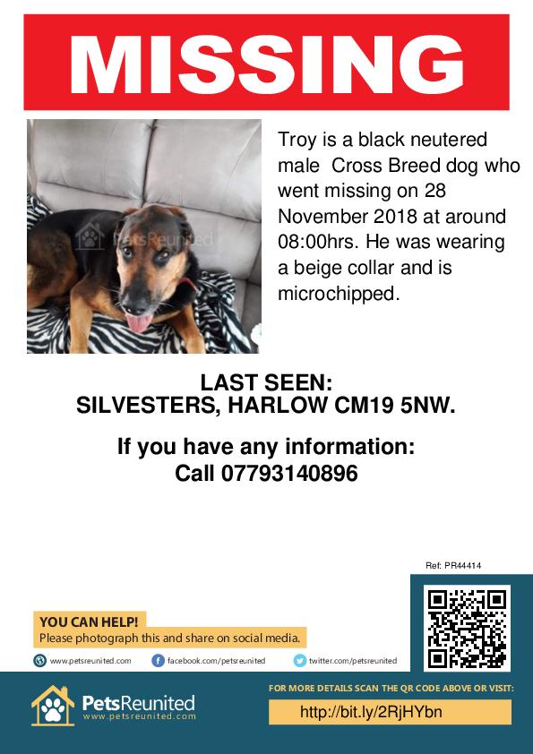 Lost pet poster - Lost dog: Black dog called Troy