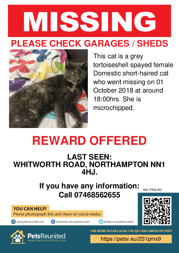 Lost pet poster - Lost cat: Grey tortoiseshell cat [name witheld]