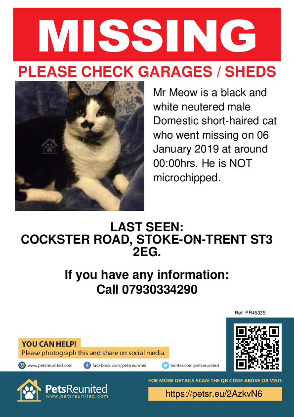 Lost pet poster - Lost cat: Black and white cat called Mr Meow