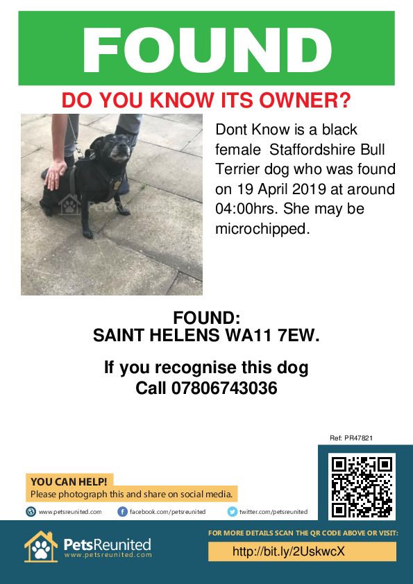 Found pet poster - Found dog: Black Staffordshire Bull Terrier dog called Dont Know