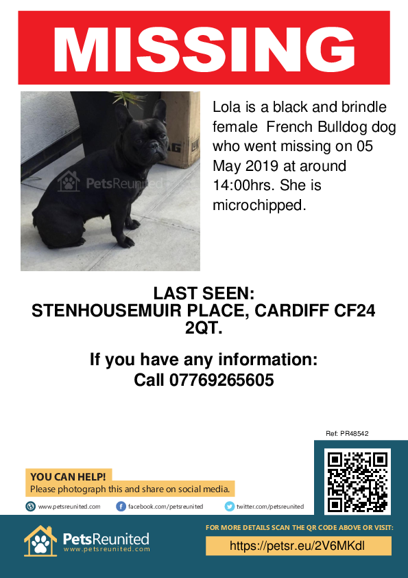 Lost pet poster - Lost dog: Black and brindle French Bulldog dog called Lola