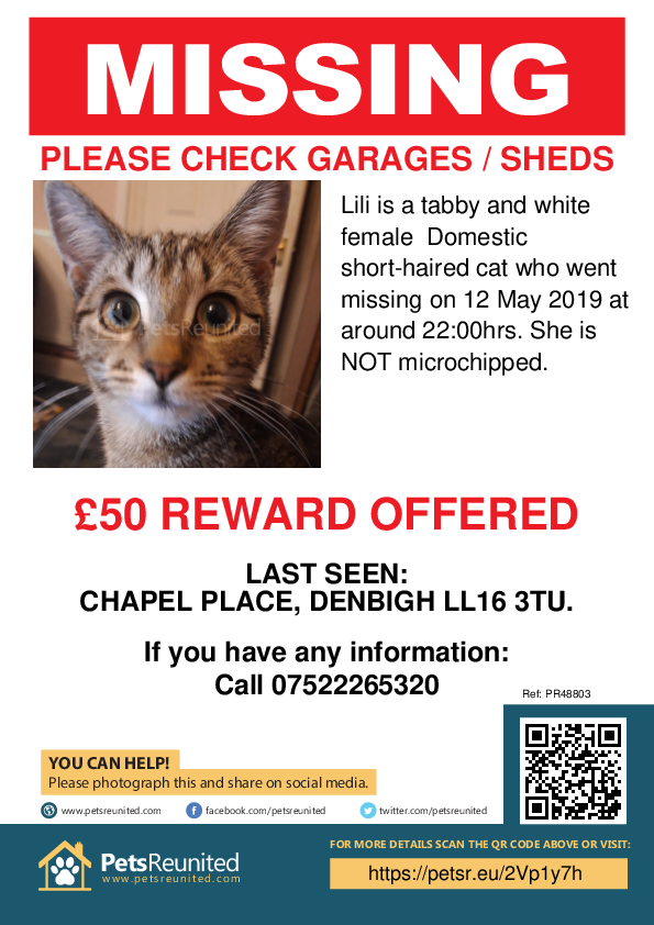 Lost pet poster - Lost cat: Tabby and white cat called Lili