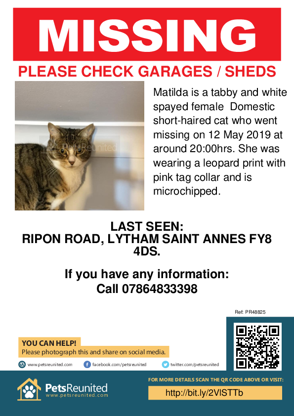 Lost pet poster - Lost cat: Tabby and white cat called Matilda